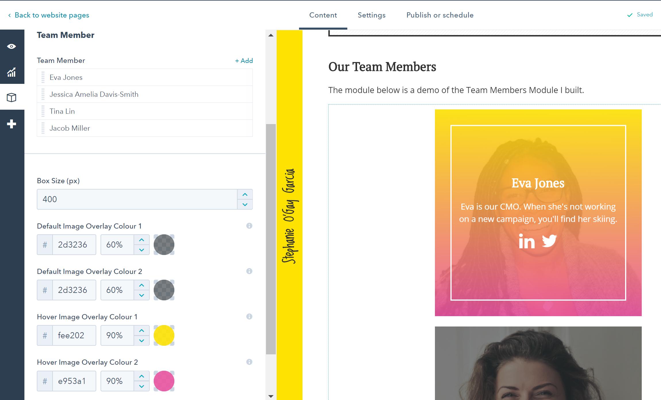 HubSpot Team Member Module Editor