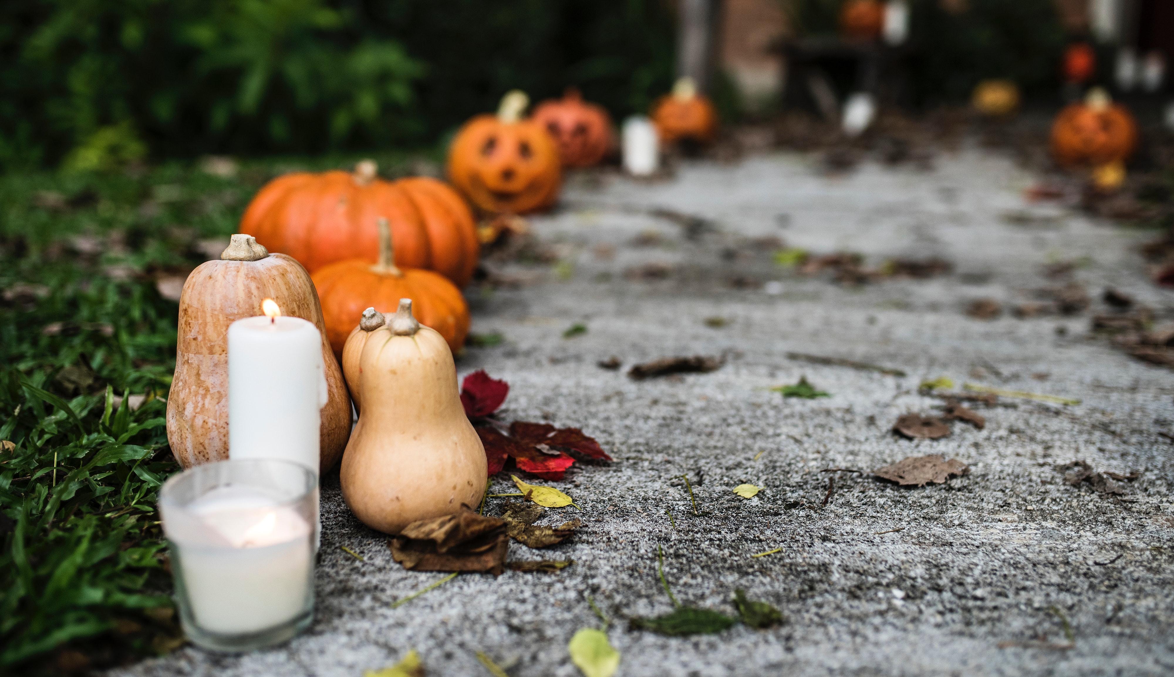 HubSpot Halloween Email Templates